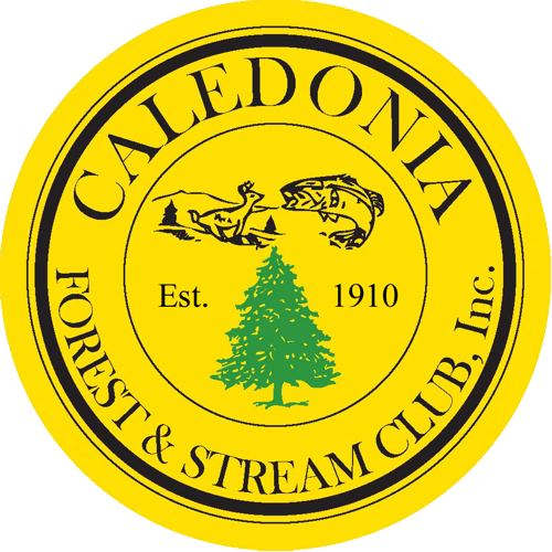 Cal FandS Club Logo-2